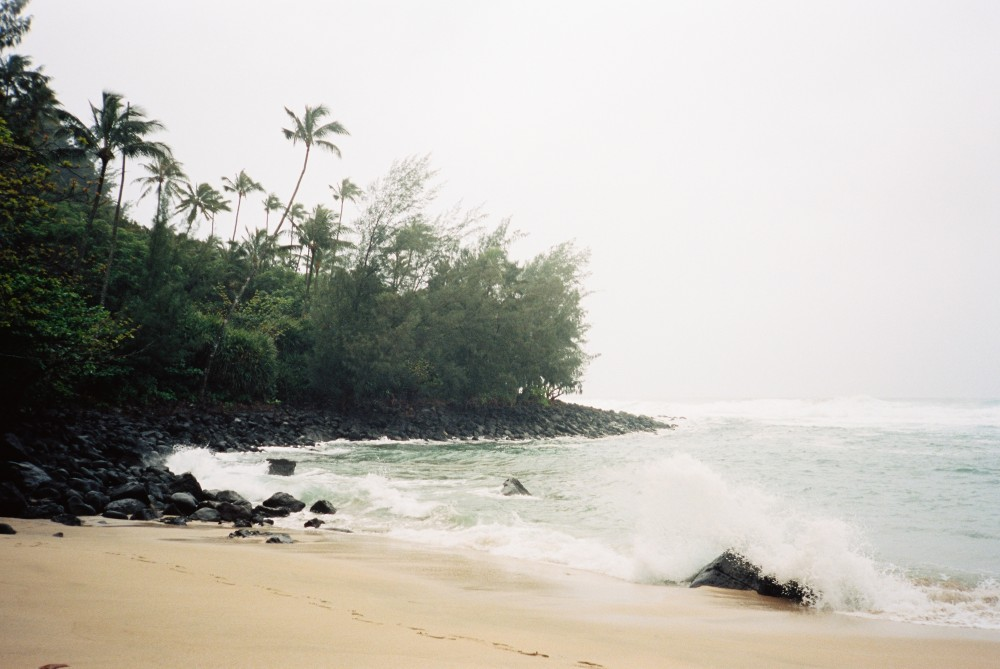 hawaii film photographer_0061