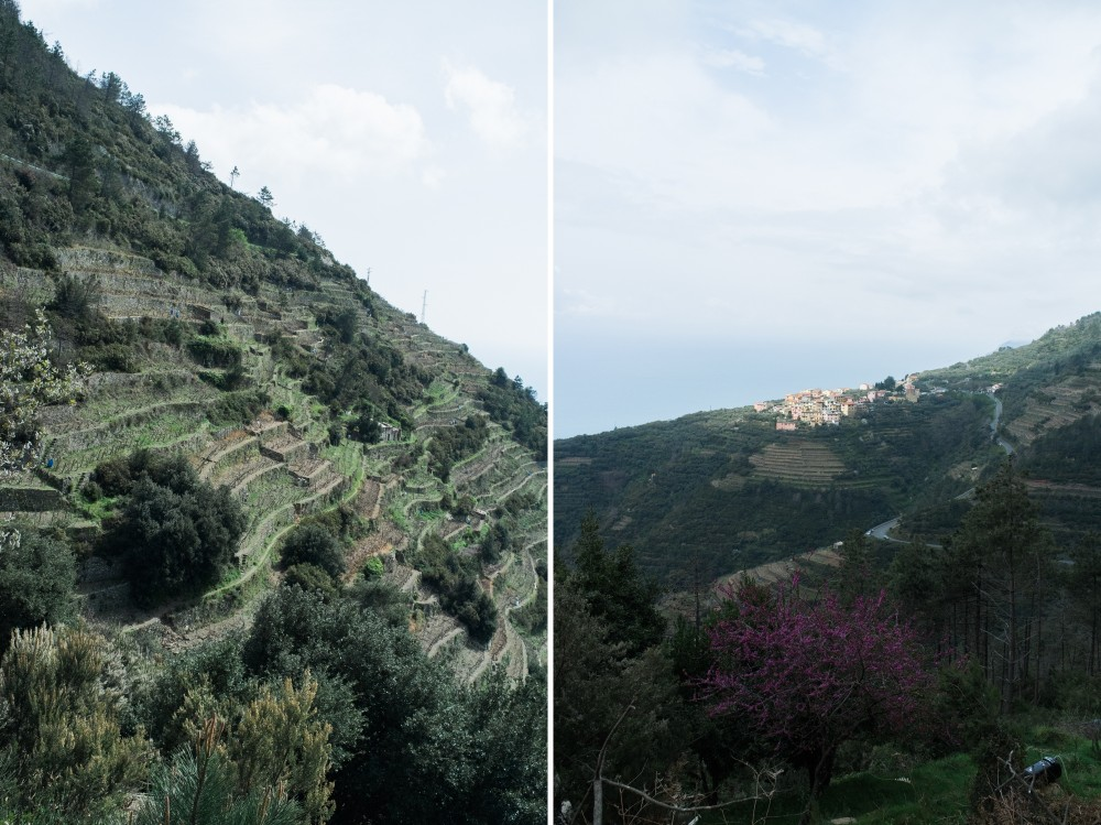 italian film photographer_0120