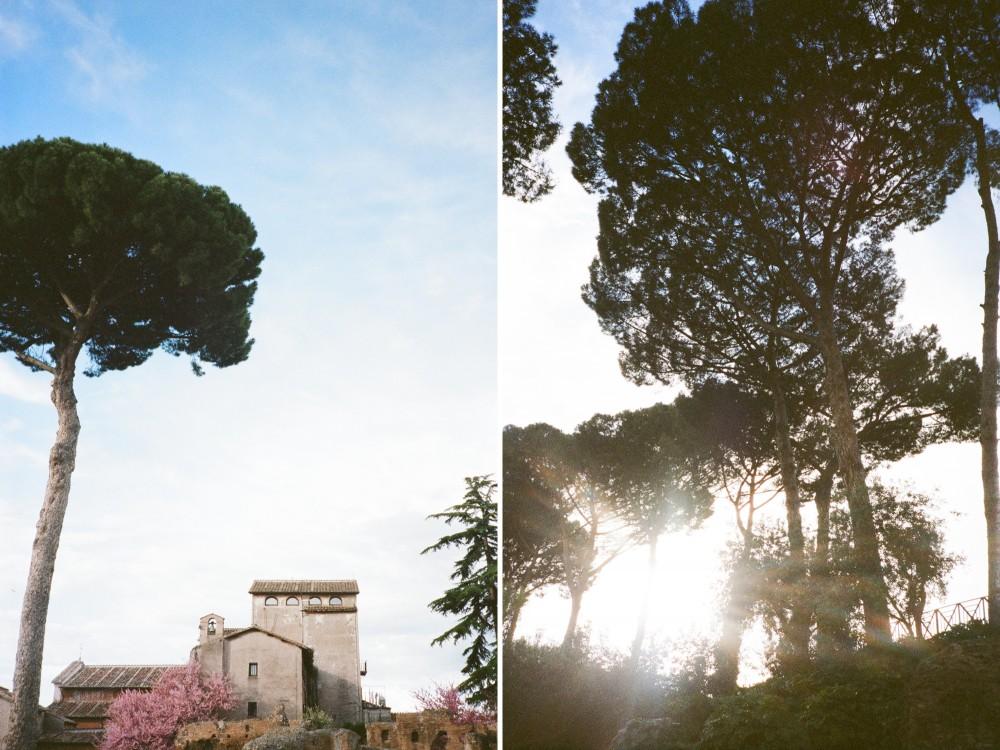 italian film photographer_0178