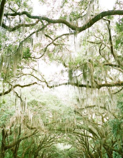 Travel: Savannah, Georgia
