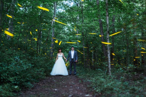 Noel & Jonathan: Green Mountain Elopement