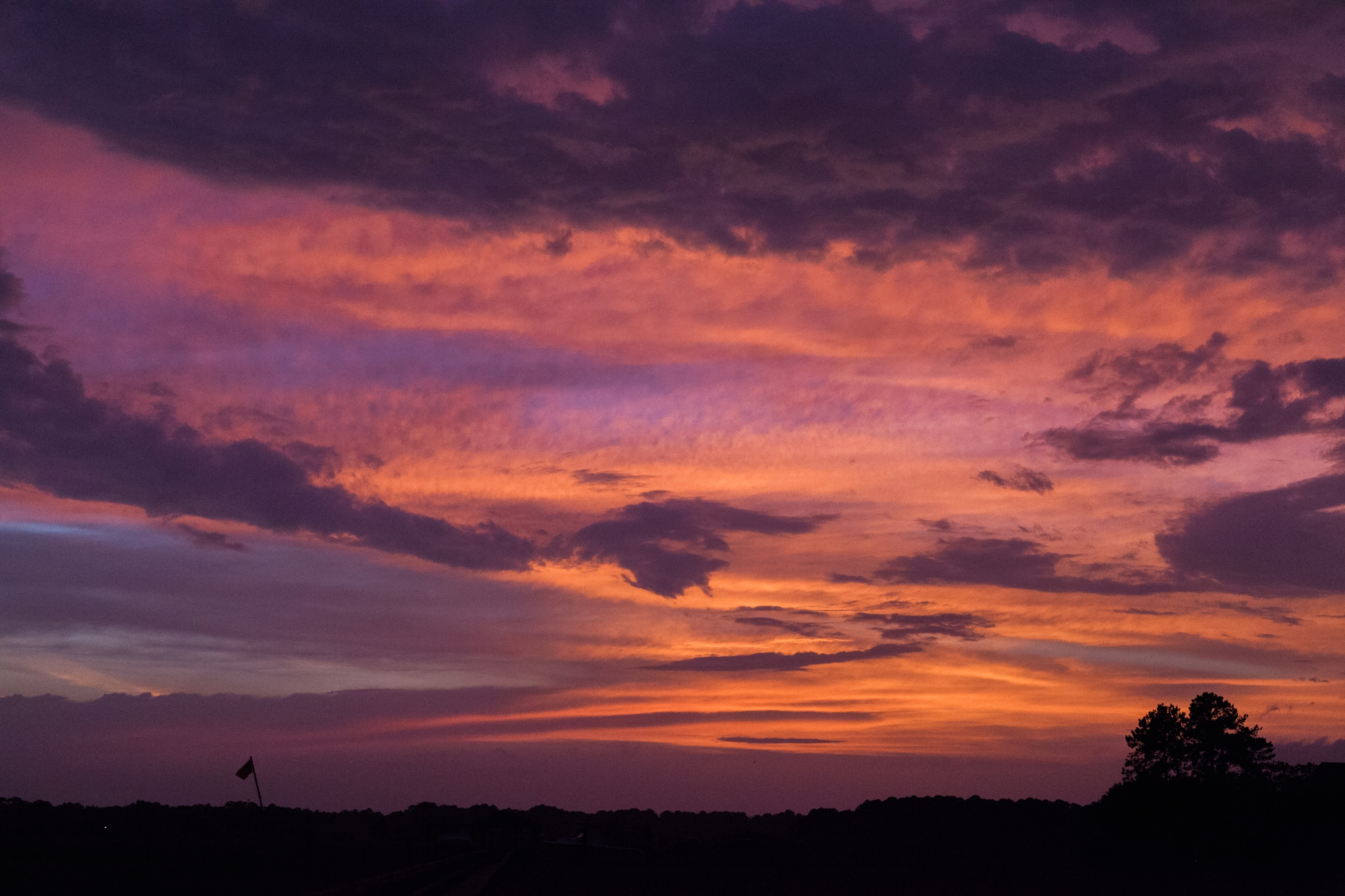 savannah film photographer_0081
