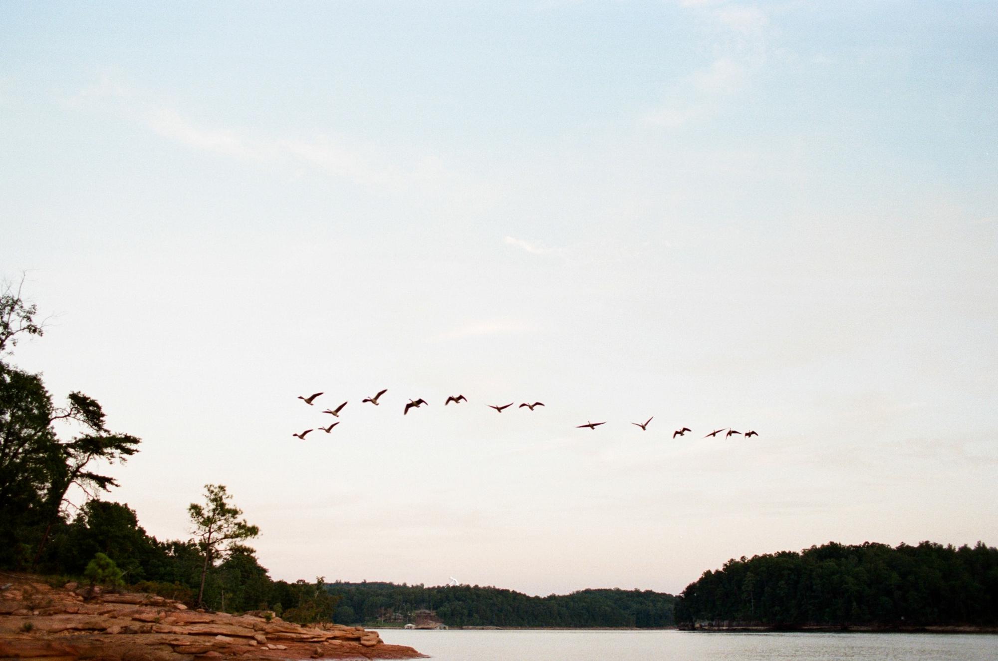 smith lake engagement_0029