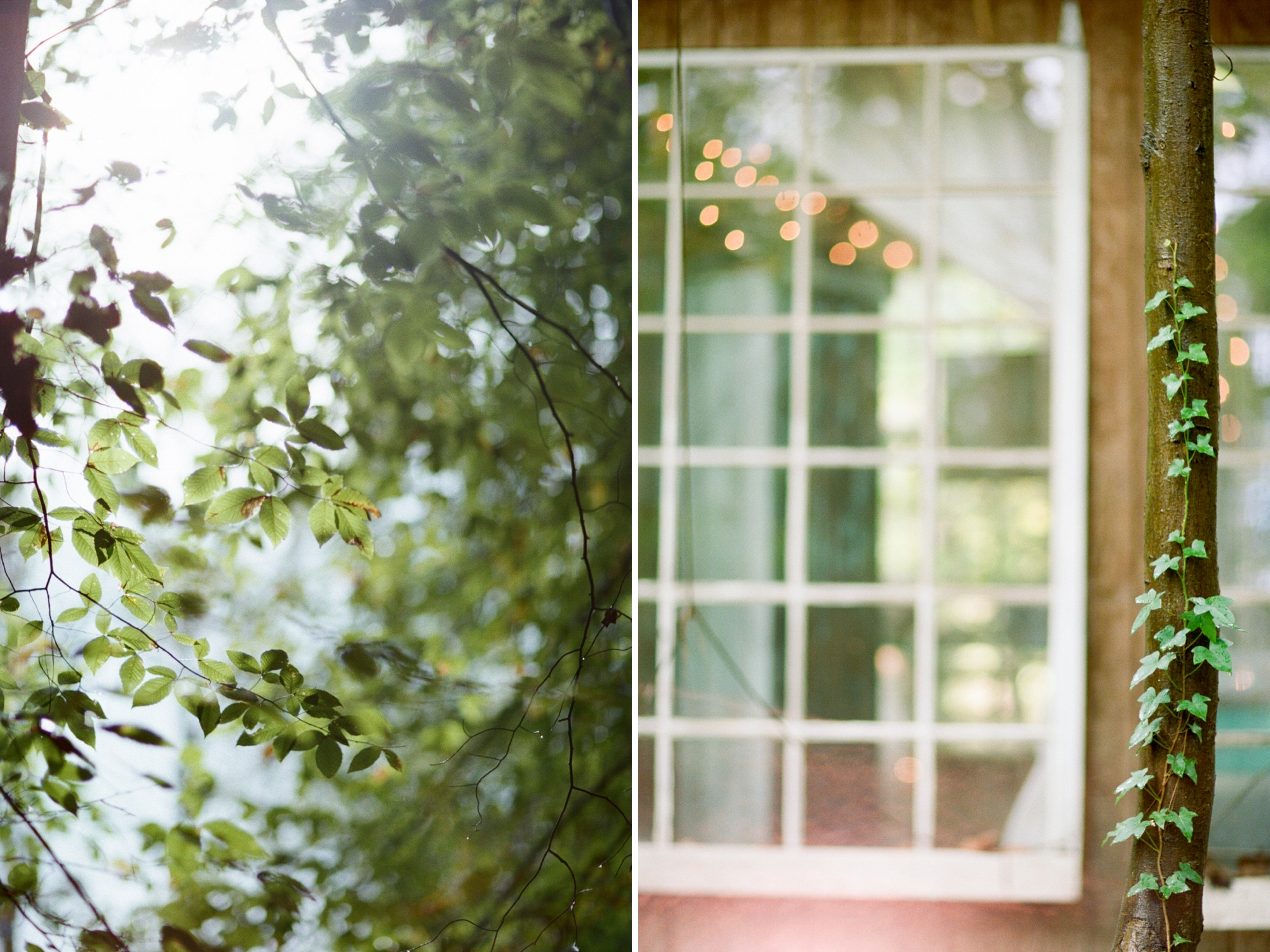 treehouse wedding - white rabbit studios_0024
