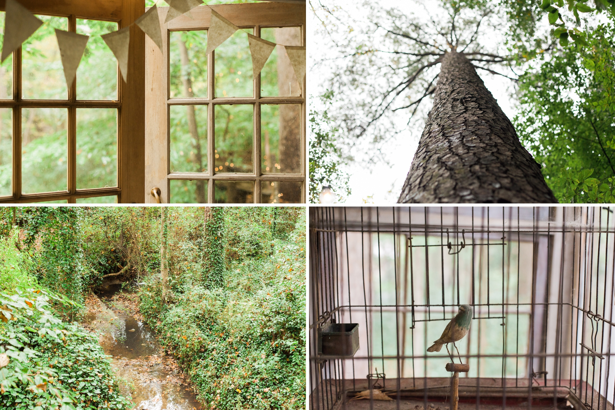treehouse wedding - white rabbit studios_0090