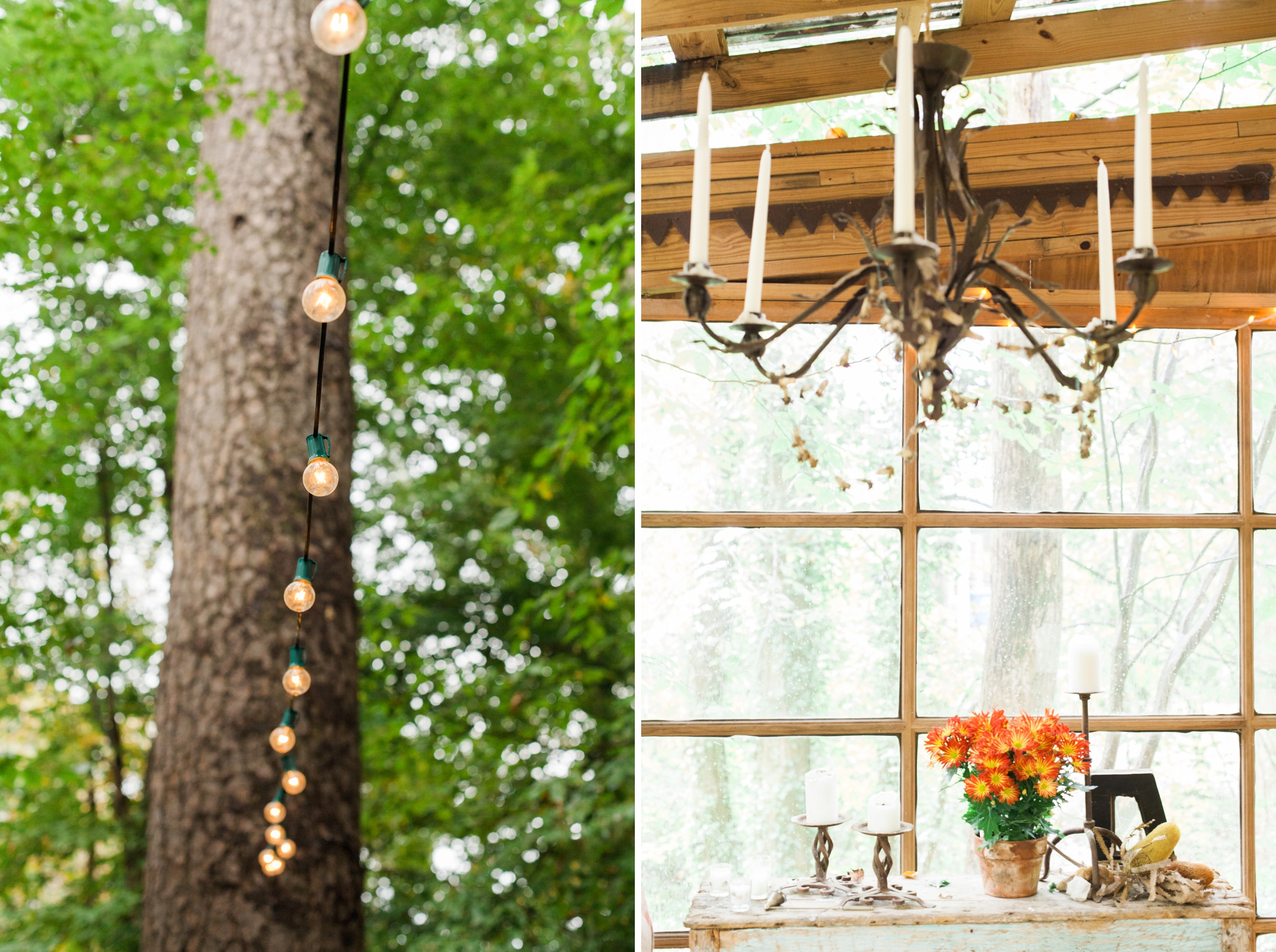 treehouse wedding - white rabbit studios_0092