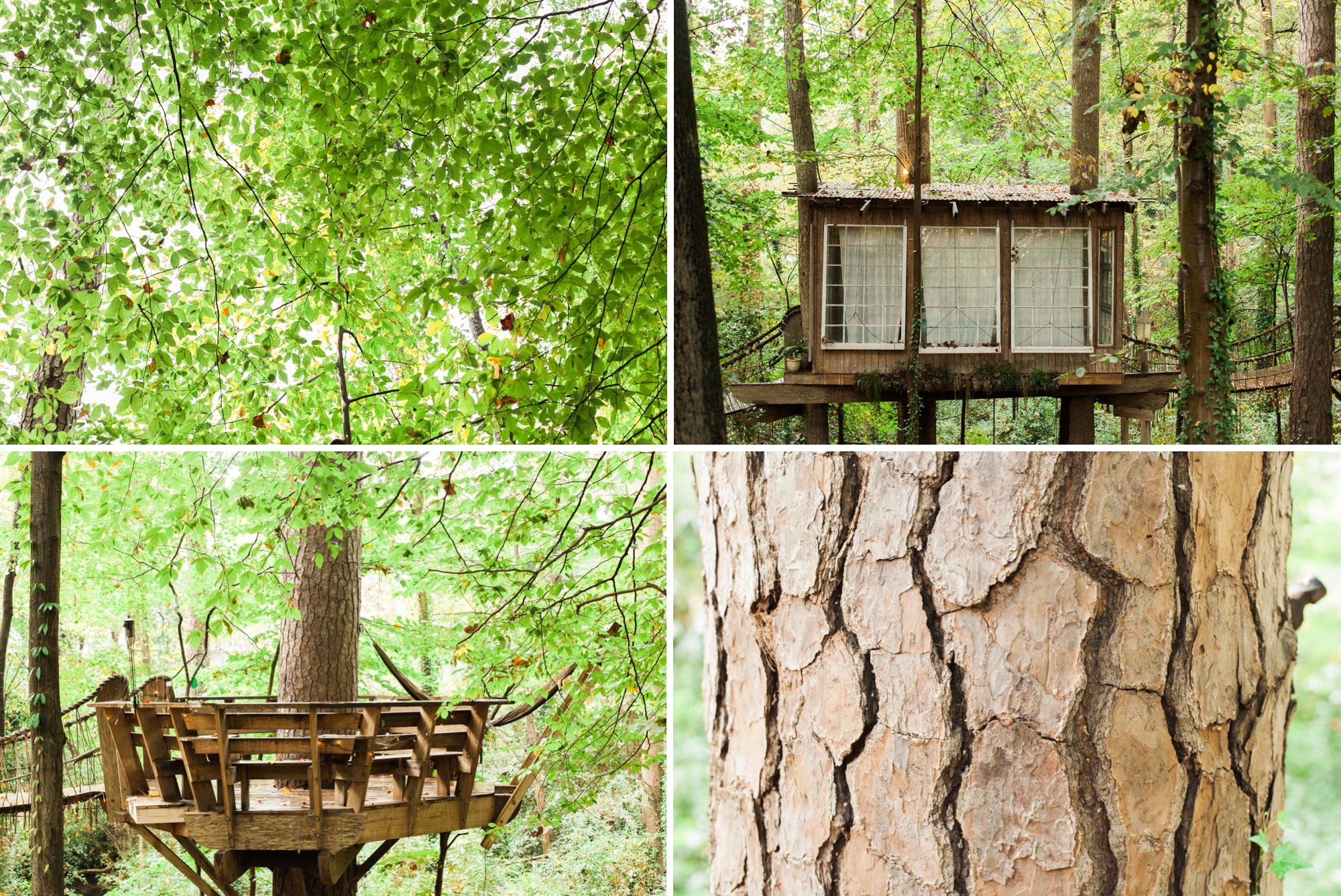 treehouse wedding - white rabbit studios_0093
