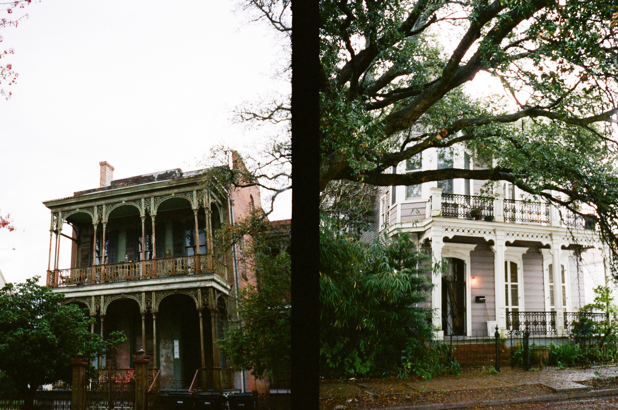 new orleans film photographer_0028