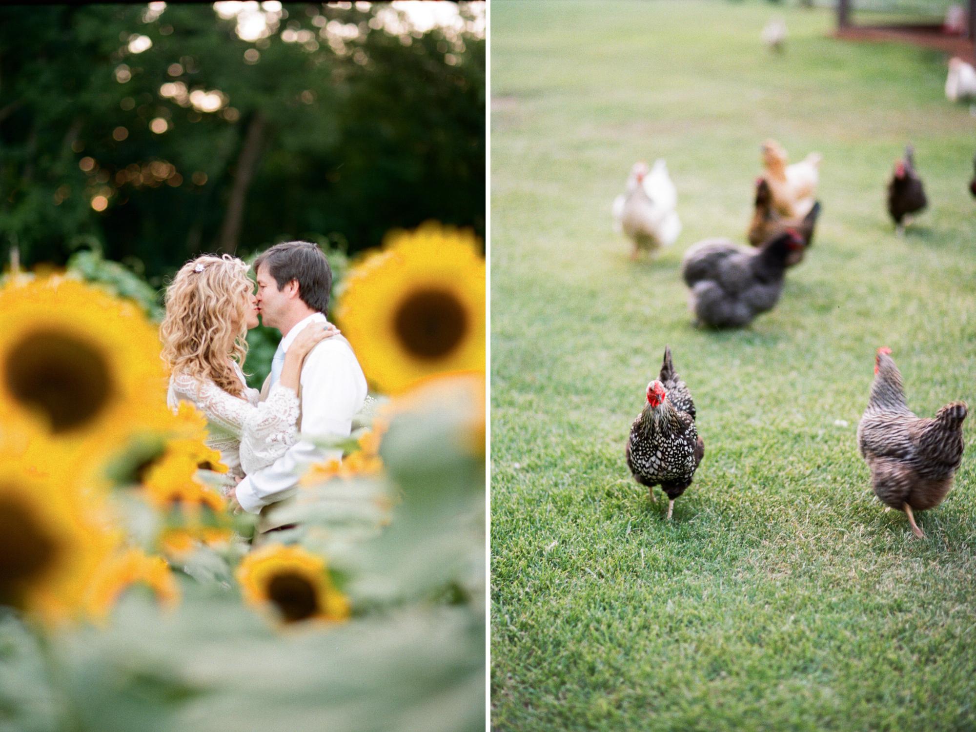 film wedding photographer_0050-2
