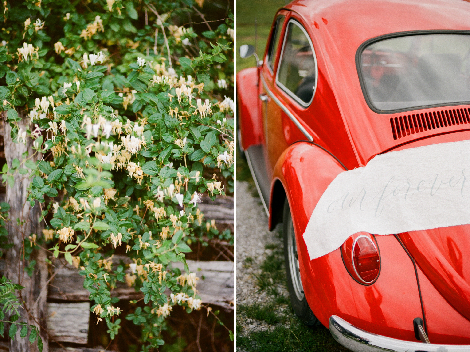 elopement film photographer_0027