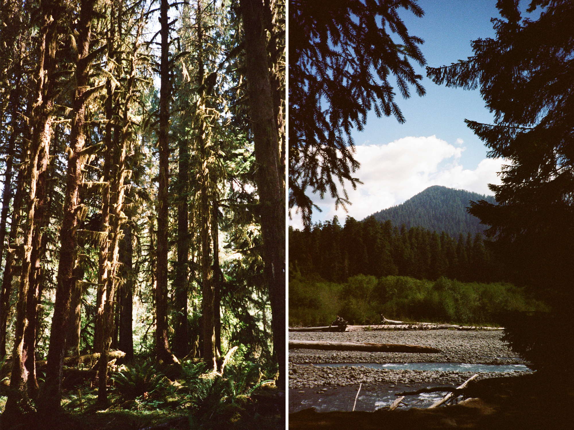 PNW film photographer_0000