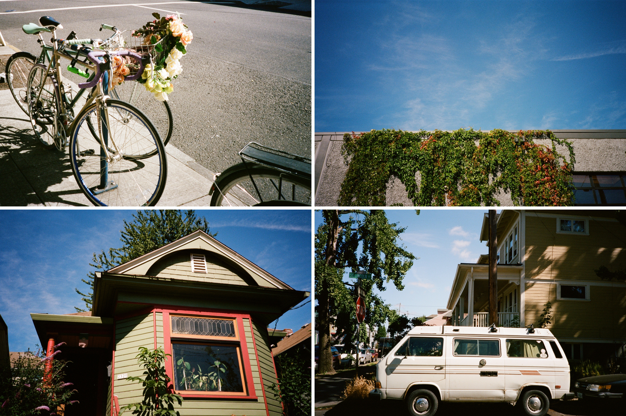 portland film photographer_0000