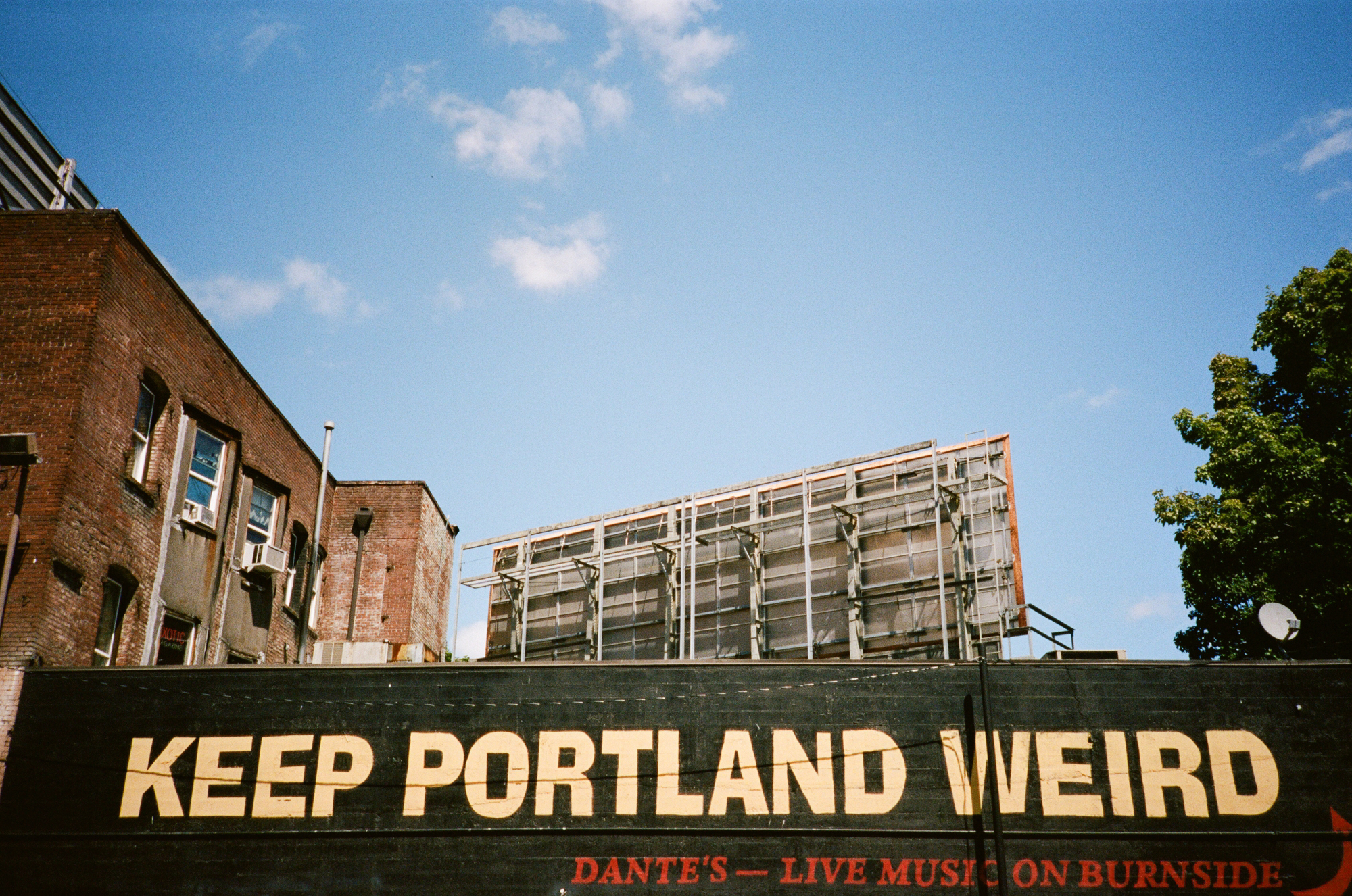 portland film photographer_0014