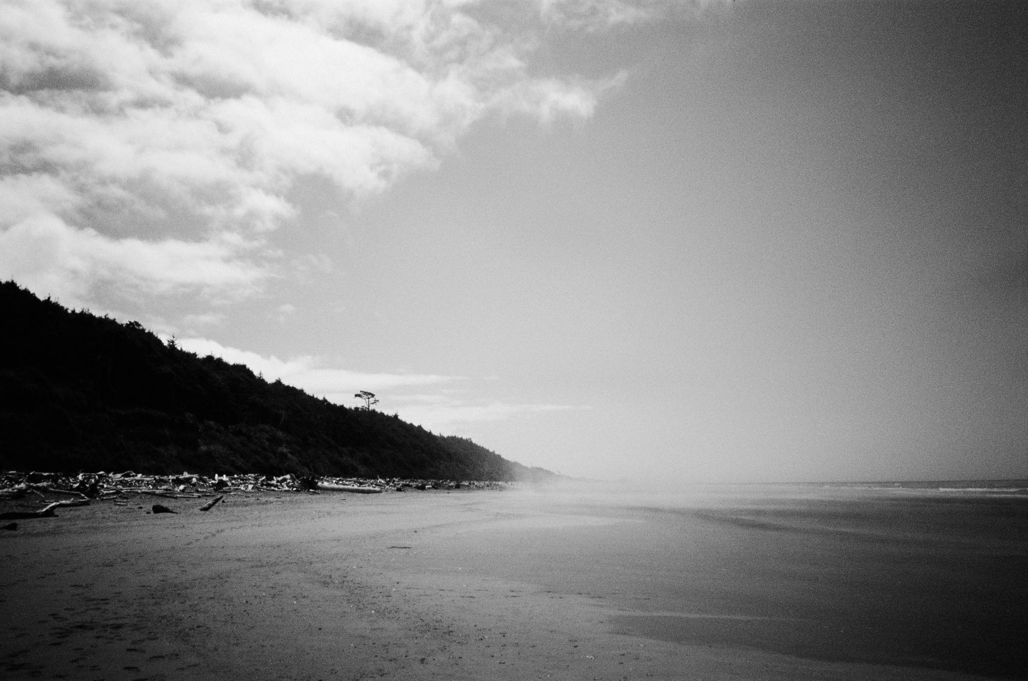 portland film photographer_0020
