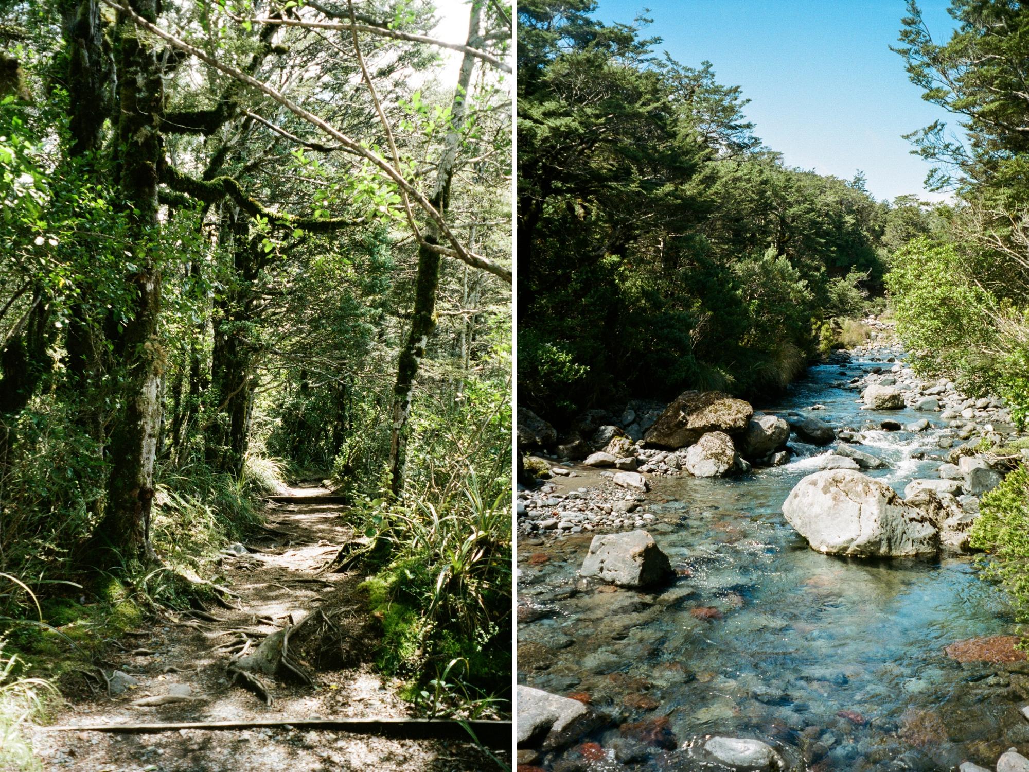 11 - Tongariro_0013