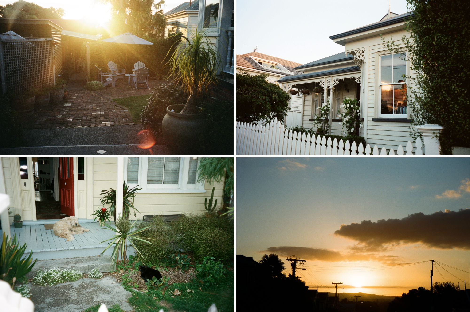 14 - Auckland_0006