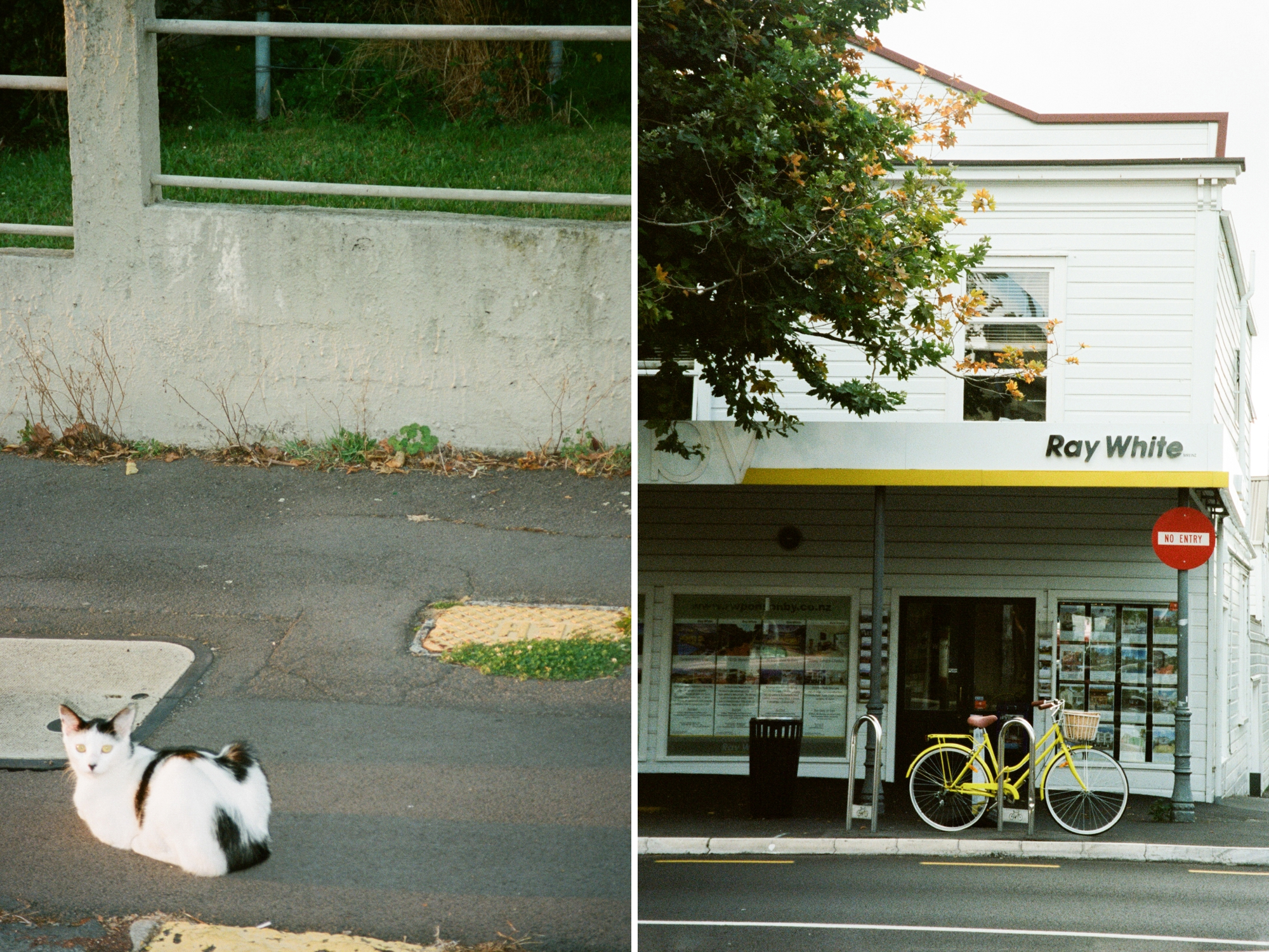 14 - Auckland_0009