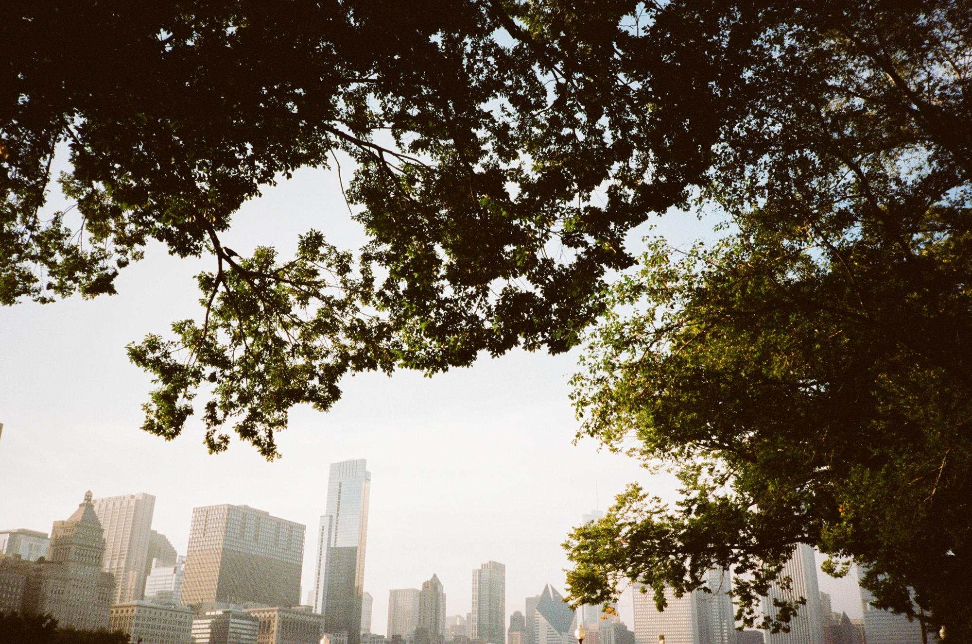 chicago photographer_0005