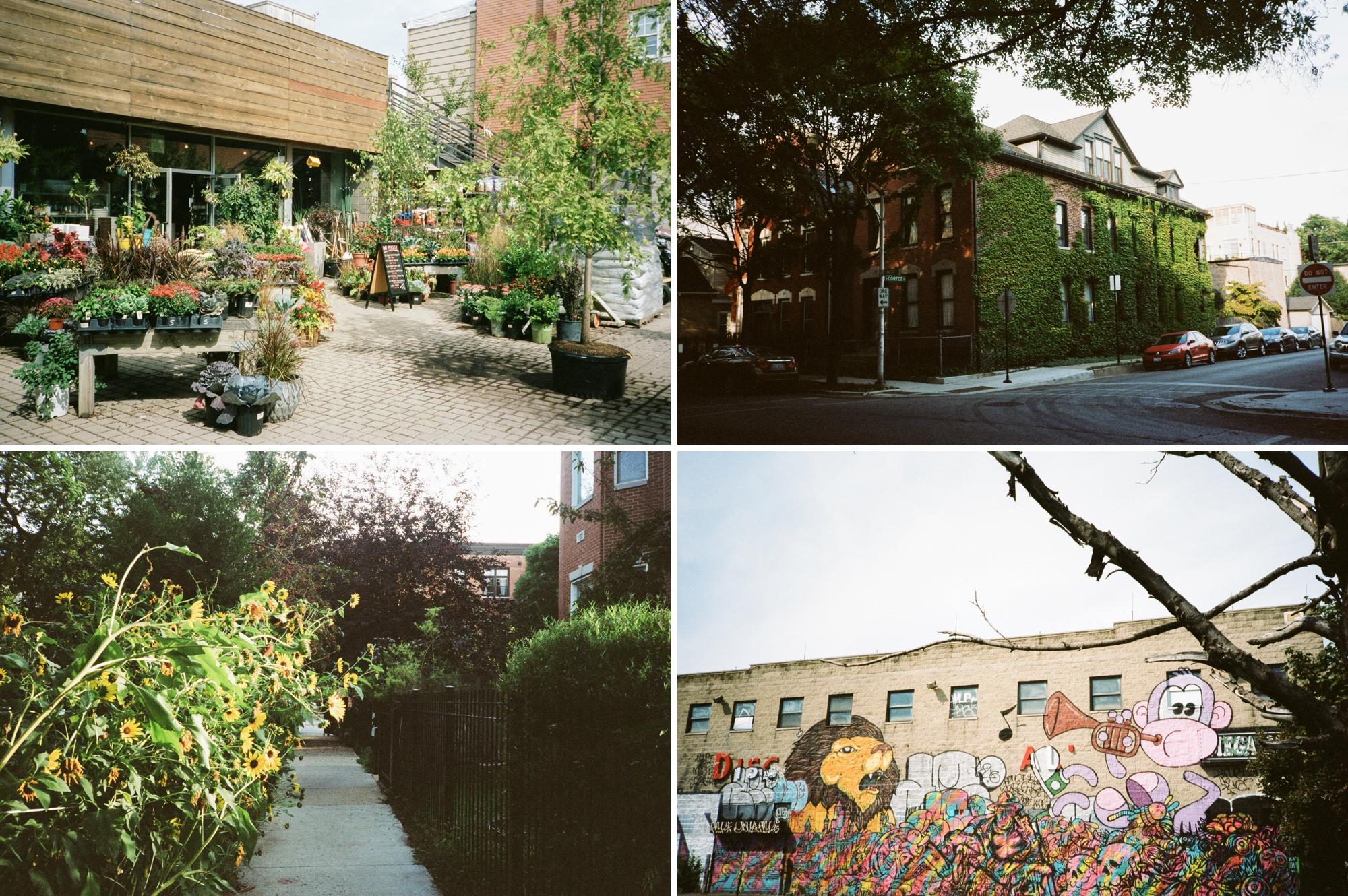 chicago photographer_0030