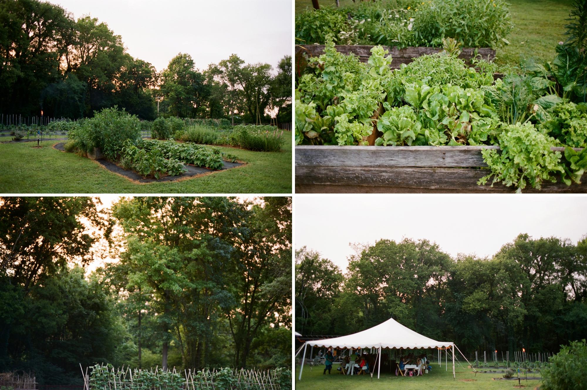farm to table dinner_0032
