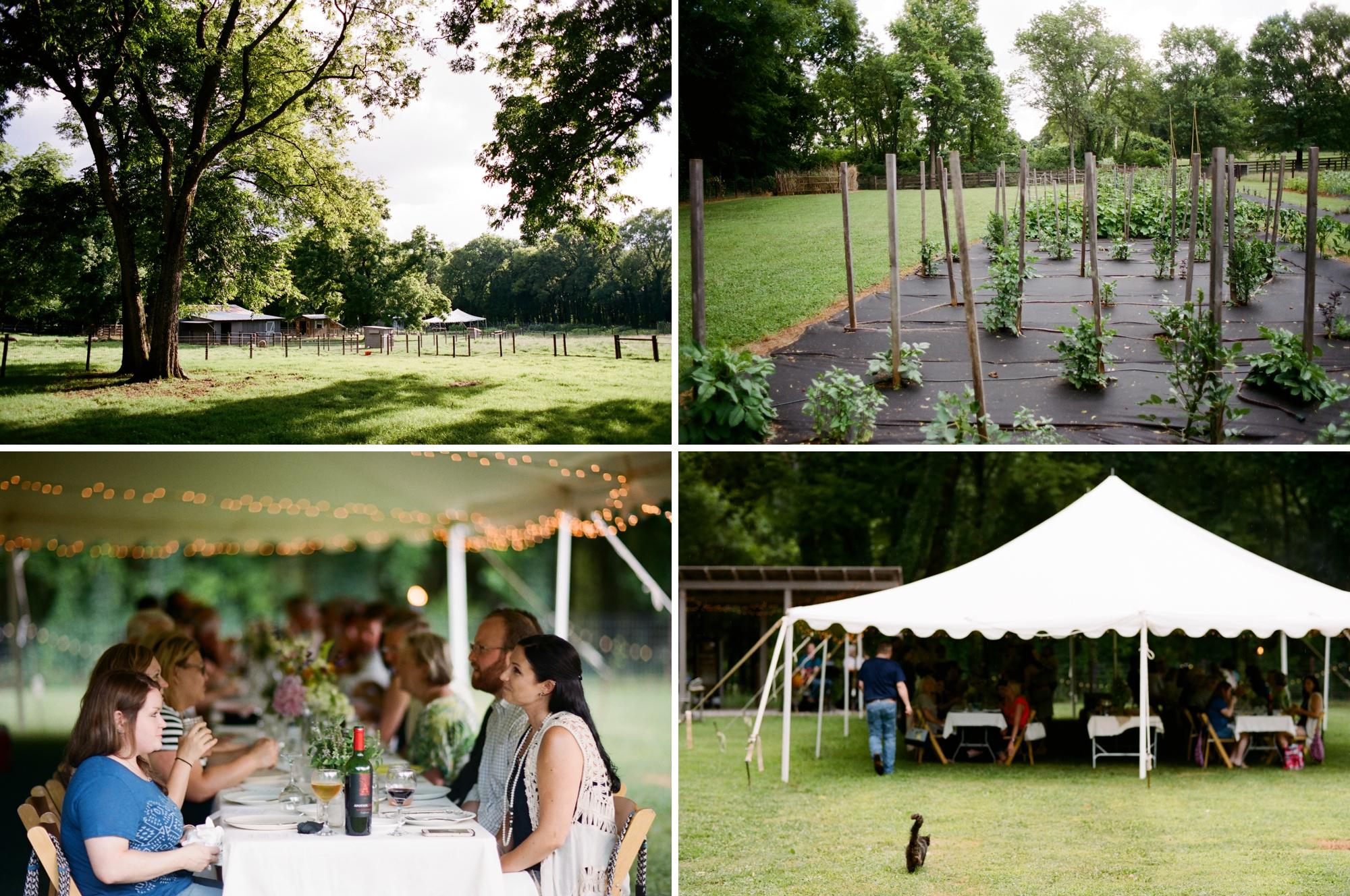 farm to table dinner_0035